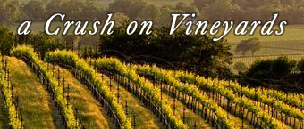 Vacation Rentals on Vineyards
